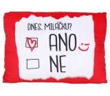 Albi Humorous pillow large Today Yes / No 36 x 30 cm