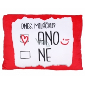 Albi Humorous pillow big Today Yes / No 36 x 30 cm