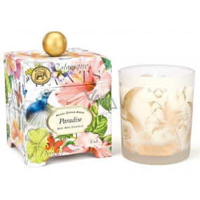 Michel Design Works Paradise Soy handmade scented candle in glass 397 g