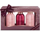 Baylis & Harding Cranberry Martini shower gel 100 ml + body lotion 100 ml + shower cream 100 ml, cosmetic set