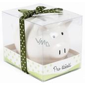 Albi Pokladnička prasátko malé Pro štěstí bílá 7 cm × 6,5 cm × 7,3 cm