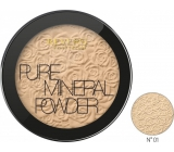 Revers Mineral Pure Compact Powder 01, 9 g