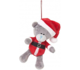Me To You Teddy bear hanging Santa