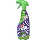 Cillit Bang Power Cleaner against grease and for greater gloss 750 ml spray