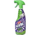 Cillit Bang Power Cleaner proti mastnotě a pro větší lesk rozprašovač 750 ml