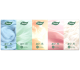 This Chic & Style hygienic handkerchiefs 3 ply 10 pieces