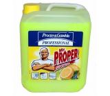 Mr. Proper Professional Lemon Universal Cleaner 5 l