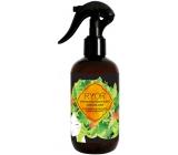 Ryor Hair Care hair growth accelerator 3 month cure spray 250 ml