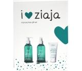Ziaja Manuka Tree Day Cream + Washing Gel + Anastringant Tonic, cosmetic set