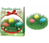 Egg decoration Grass green set