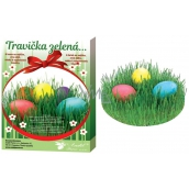 Egg decoration Grass green set