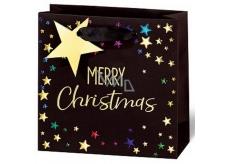 BSB Luxury gift paper bag 14.5 x 15 x 6 cm Christmas Merry Christmas VDT 433-CD