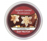 YC.Scenterpiece wax / Glittering Star