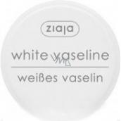 Ziaja Cosmetic Vaseline for all skin types 30 ml