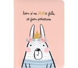 Albi Diary 2020 Weekly Princess 17 x 12,5 x 1,2 cm