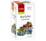 Apotheke Natur Blueberry and cranberry fruit tea 20 x 2 g