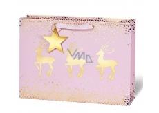 BSB Gift Paper Bag 23 x 19 x 9 cm VDT 422 - CD