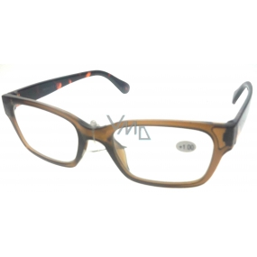 Berkeley Optical reading glasses +2,0 plastic brown 1 piece ER4198