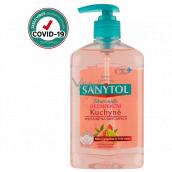 Sanytol Pink Grapefruit & Fresh Lemon Disinfectant Hand Soap for Kitchen 250ml with Dispenser