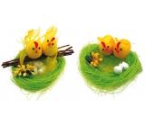 Hnízdo zelené s 2 kuřátky 10 cm