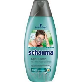 Schauma Freshness mint hair shampoo for men 250 ml