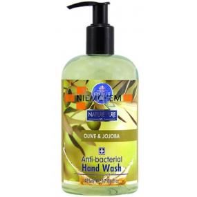 Cyclax Nature Pure Olive + Jojoba antibacterial liquid soap 500 ml