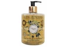 Jeanne en Provence Divine Olive 500 ml hand washing gel