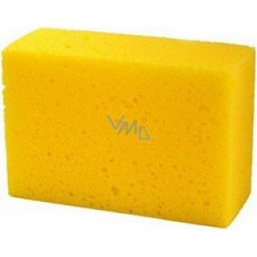 Universal sponge 15x10x5 cm