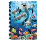 Prime3D Workbook A5- Dolphins