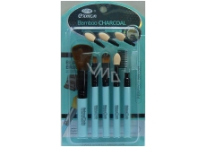 Brush set of various colors BC 259