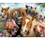 Prime3D Poster - Selfie Horses 39.5 x 29.5 cm