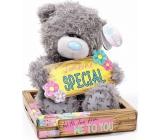 Me to You Teddy bear Someone Special placka 14 cm
