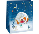 Ditipo Gift paper bag 26.4 x 13.6 x 32.7 cm igloo with animals DAB
