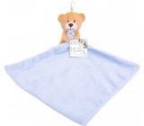 First Steps Sleepwalker with plush head Teddy bear blue 24 x 26 cm