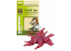 Huhubamboo Excellent Sušená kachní prsa přírodní masová pochoutka pro psy 75 g