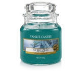 Yankee Candle Icy Blue Spruce - Icy Blue Spruce Scented Candle Classic Small Glass 104 g