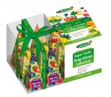 Liran Christmas packaging Fruit teas in pyramids 12 x 2 g