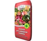 Peat Soběslav Soil for houseplants 10 l