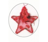 Star with feather and sequins Red 11 cm