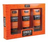 Xpel Ginger anti-dandruff shampoo 100 ml + hair conditioner 100 ml + shower gel 100 ml, cosmetic set