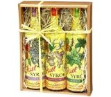 Kitl Syrob Bio Elderflower syrup 500 ml + Ginger syrup 500 ml + Mint syrup for homemade lemonade 500 ml, gift box