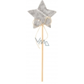 Decorations of gray 6 cm star + skewers