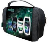 Palmolive Men Sensitive 250 ml men's shower gel + Invigorating Shampoo 350 ml + Refreshing 3in1 250 ml shower gel + Mennen Speed Stick Power of Nature 60 ml + deodorant stick