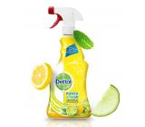 Dettol Citron & Lime antibacterial multi-purpose spray 500 ml spray
