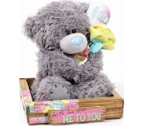 Me to You Teddy bear with roses Friends 14 cm