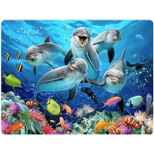 3D Postcard- Dolphins 16 x 12 cm