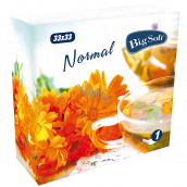 Big Soft Normal paper napkins 1 ply 33 x 33 cm 100 pieces