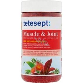 Tetesept Muscle & Joint Muscles and joints Rosemary + Camphor + Eucalyptus 100% Sea salt 900 g