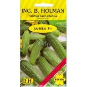 Holman Aurea F1 okurky nakladačky jemnoostná 2,5 g