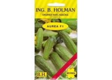 Holman Aurea F1 cucumber loaders fine 2.5 g